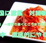cmn612_makkanakimuchi_tp_v